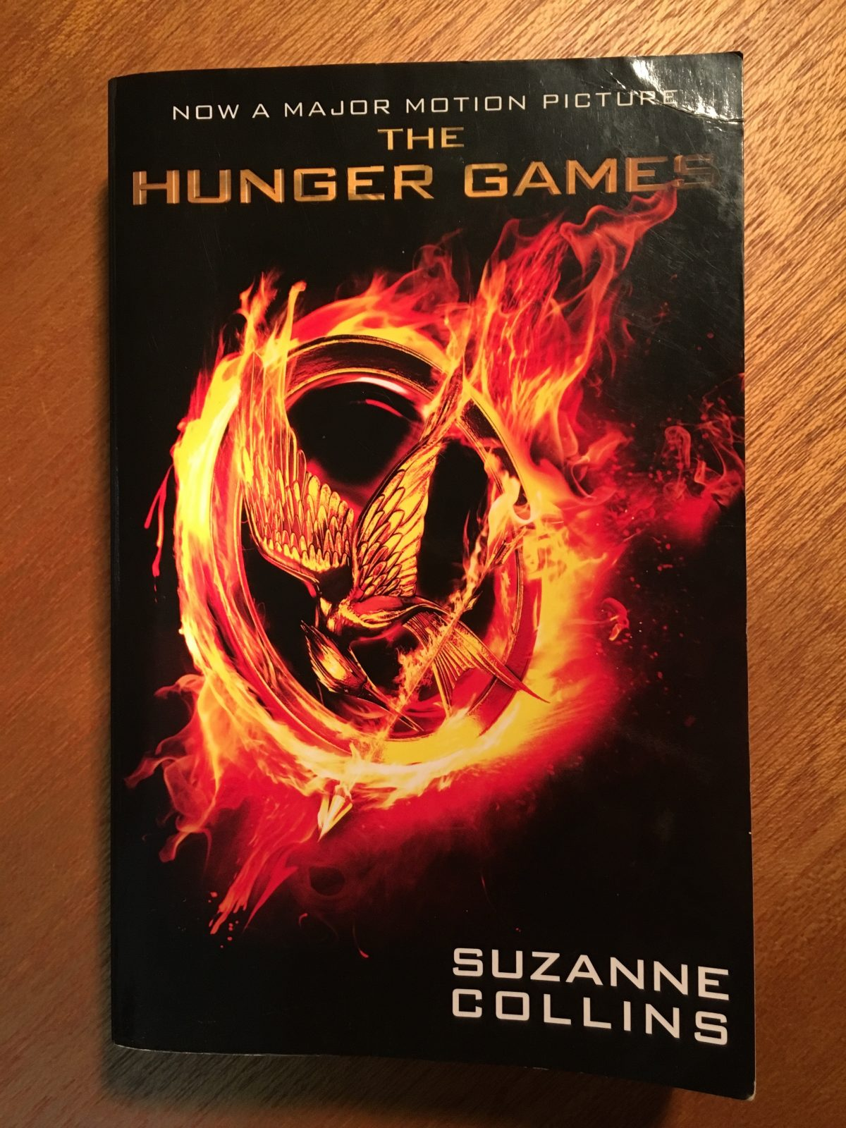 an analysis of the themes in the novel hunger games by suzanne collins Character analysis of the main characters in the hunger games the theme of humanity in the novel the hunger games by suzanne collins.